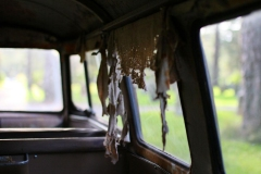 fallen-inner-roof-patina-vw-bus
