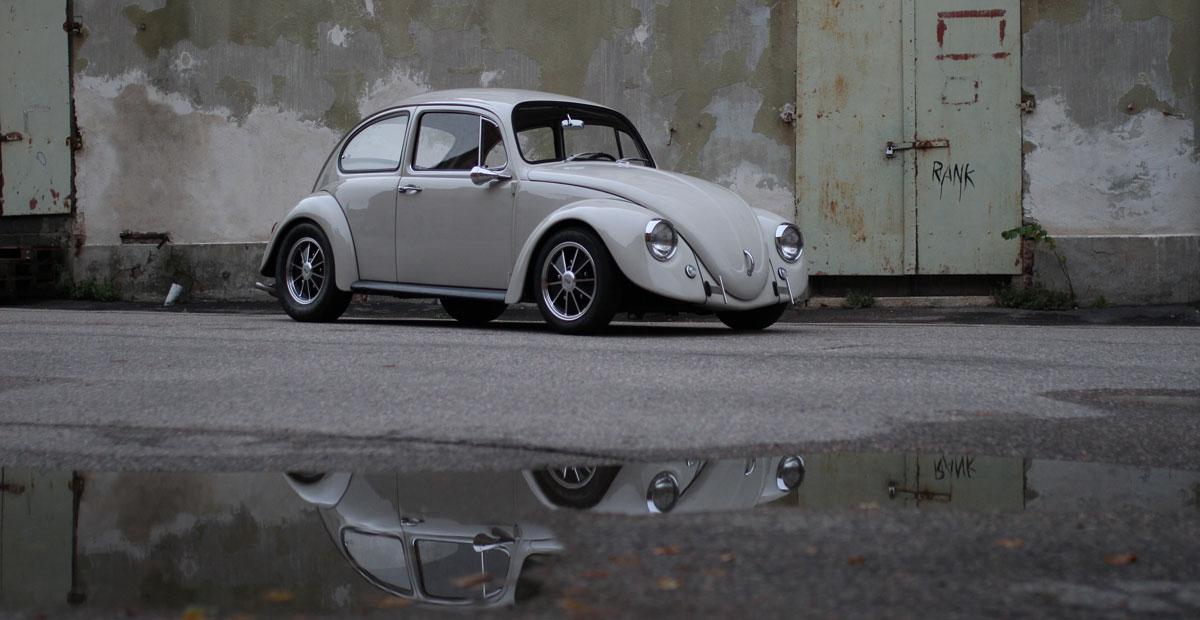California Look Beetle 1967